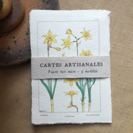 Cartes botaniques vintage