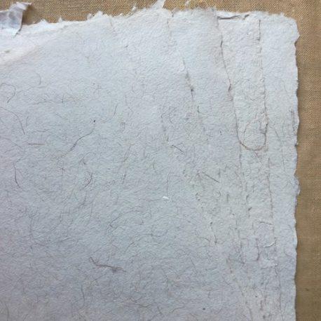 Papier-de-cocotier