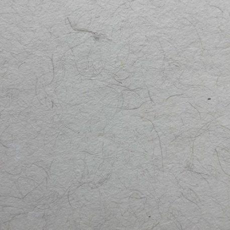 Papier-de-cocotier-Detail