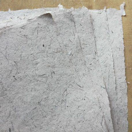 Papier-deucalyptus