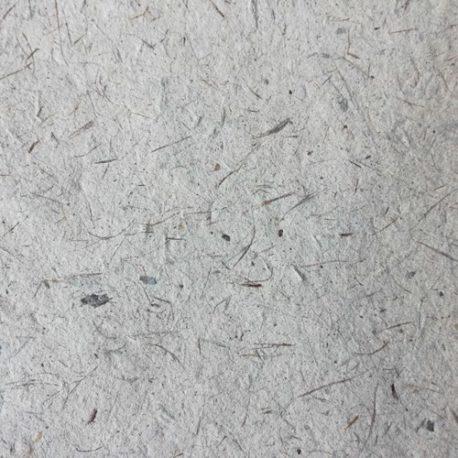 Papier-deucalyptus-Detail