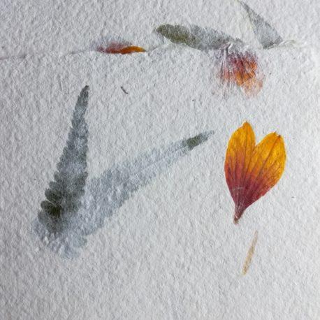 Papier du jardin - Fleurs